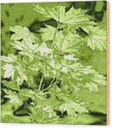 High Street Decor 5 Wood Print