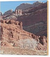 High Wall Of Red Cliffs Wood Print