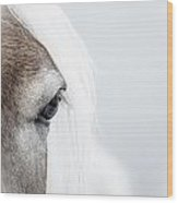 Highkey Horse Eye Wood Print