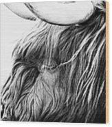 Highland Cow Mono Wood Print by John Farnan