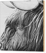 Highland Cow Mono Wood Print