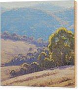 Highland Grazing Lithgow Wood Print