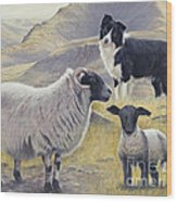 Highland Spirit Wood Print by John Silver