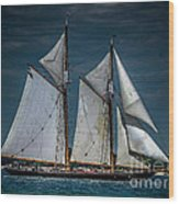 Highlander Sea Wood Print