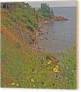 Highlands Coastline In Cape Breton Highlands Np-ns Wood Print