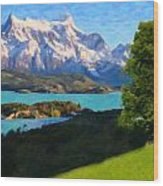 Highlands Of Chile  Lago Pehoe In Torres Del Paine Chile Wood Print