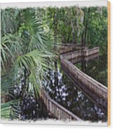 Highwater Reflection Wood Print