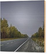 Highway Of Foliage Wood Print