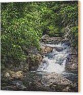 Highway Rapids Wood Print