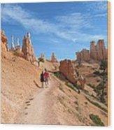 Hike In Bryce Canyon Wood Print