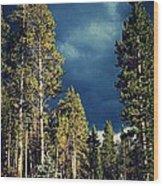 Hike In The Woods Wood Print