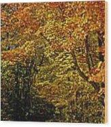 Hike Wood Print