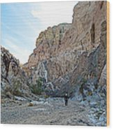 Hiker In Big Painted Canyons Trail In Mecca Hills-ca Wood Print