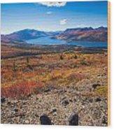 Hiker In Fall-colored Tundra Wood Print