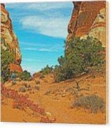 Hiking Between Massive Needles In Needles District Of Canyonlands National Park-utah Wood Print