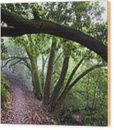 Hiking Huckleberry Wood Print