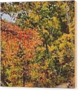 Hiking In Autumn Wood Print