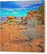 Hiking In Canyonlands Wood Print