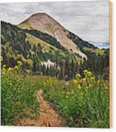 Hiking In La Sal Wood Print