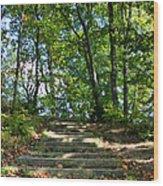 Hiking In Virginia Kendall Wood Print by Kristin Elmquist