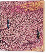 Hiking On The Cracked Purple Earth Wood Print