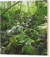 Hiking The Falls Wood Print
