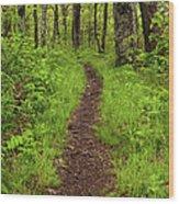 Hiking Through The Blue Ridge I Wood Print