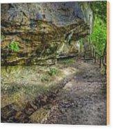 Hiking Trail Wood Print