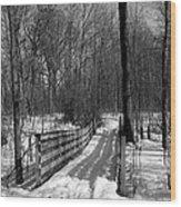 Hiking Trail Bridge With Shadows 3 Bw Wood Print