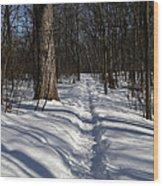 Hiking Trail Shadows Wood Print