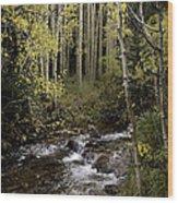 Hiking View Wood Print