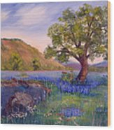 Hill Country Spring Wood Print