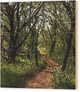 Hill Country Trail Wood Print