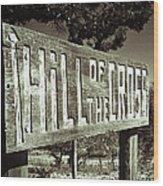 Hill Of The Cross Wood Print