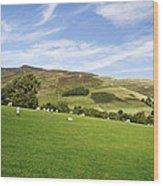 Hill Range North Of Edale Wood Print