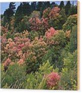 Hill Side Colors Wood Print