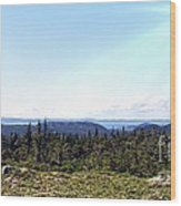 Hill View - Summer - Berry Picking Barrens Wood Print