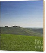 Hills On The Field Wood Print