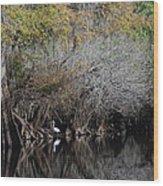 Hillsborough Egret 01 Wood Print