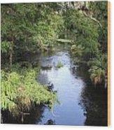 Hillsborough River Wood Print