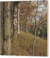 Hillside Autumn Wood Print