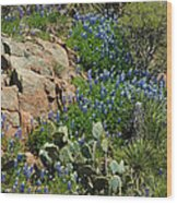 Hillside Blue Wood Print by Robert Anschutz