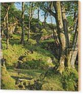 Hillside Forest Wood Print