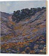 Hillside Sage Wood Print