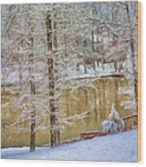 Hillside Snow - Winter Landscape Wood Print