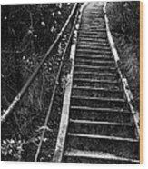 Hillside Stairs Wood Print