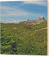 Hillside View Of Swissair Flight 111 Memorial In Whalesback-ns Wood Print