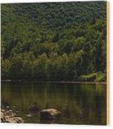 Hilltop In The Berkshires Wood Print