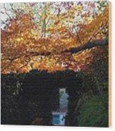 Hillwood Mansion Fall Garden Wood Print