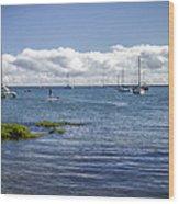 Hilo Bay Wood Print